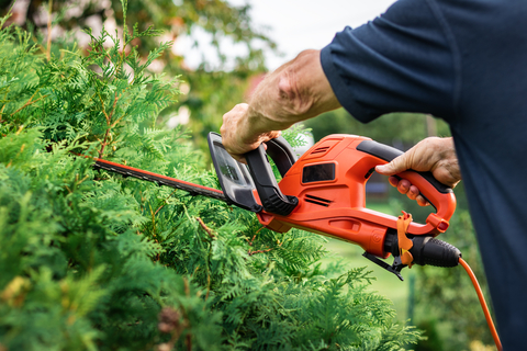 Secure Property - Tidying your garden